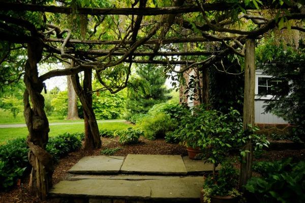 """""""Haverá quintal, jardins e árvores por todos os lados"""""""