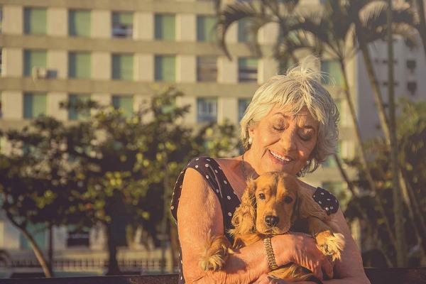 Dando carinho ao cachorrinho de estimação