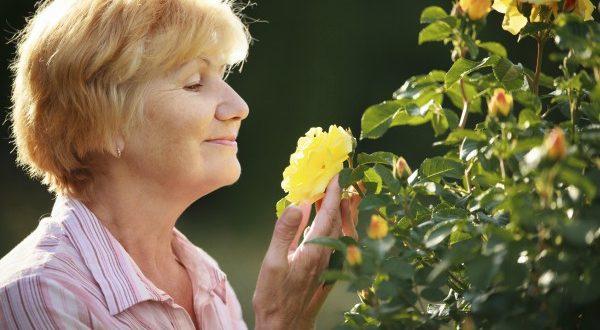 Estudo mostra: mais velhos vivem mais satisfeitos do que jovens