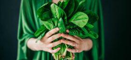 Alface, couve e outras folhas para ajudar a manter a memória