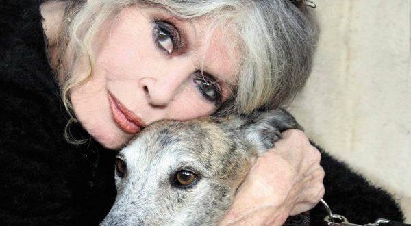 Brigitte Bardot: Aceito o que o tempo e a natureza me impõem