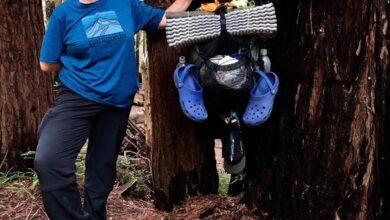 Foto de Brasileira conta como vive a quarentena sozinha na Califórnia